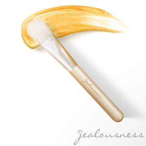 婕洛妮絲 – 多用途專業敷臉刷
