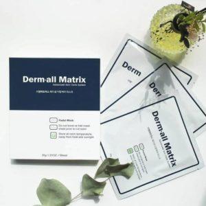 韓國 DERMALL-MATRIX 人皮面膜 (4片)